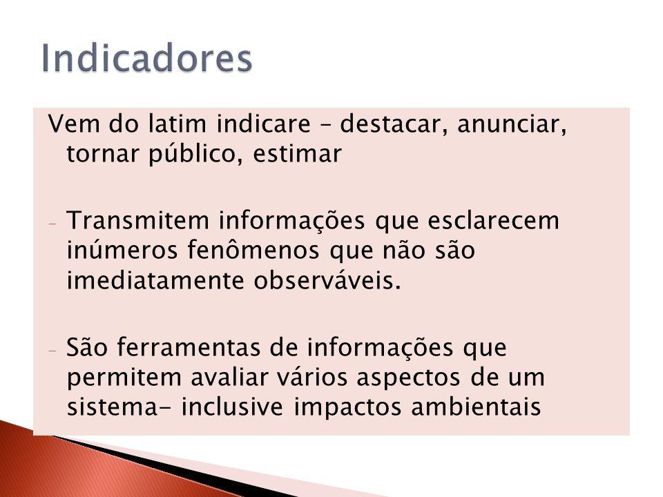 Vem do latim indicare – destacar, anunciar, tornar público, estimar - Transmitem informações que esclarecem inúmeros fenômenos que não são imediatamen