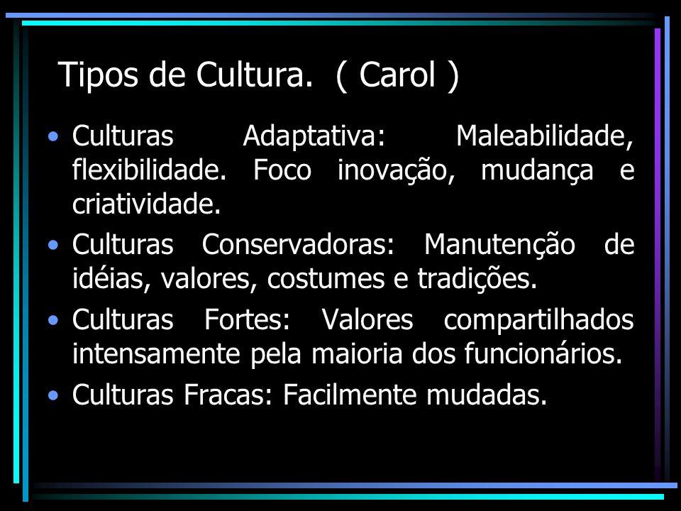 Tipos de Cultura. ( Carol ) Culturas Adaptativa: Maleabilidade, flexibilidade. Foco inovação, mudança e criatividade. Culturas Conservadoras: Manutenç