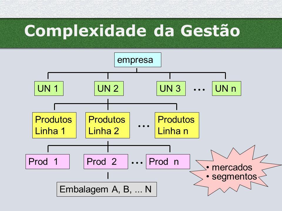 Complexidade da Gestão empresa UN 1UN 2UN 3UN n Produtos Linha 1 Produtos Linha n Produtos Linha 2 Prod 1... Prod 2Prod n... Embalagem A, B,... N merc