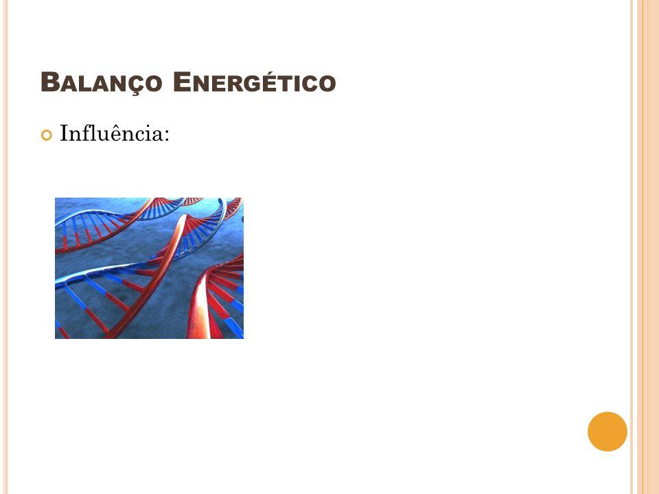 B ALANÇO E NERGÉTICO Influência: