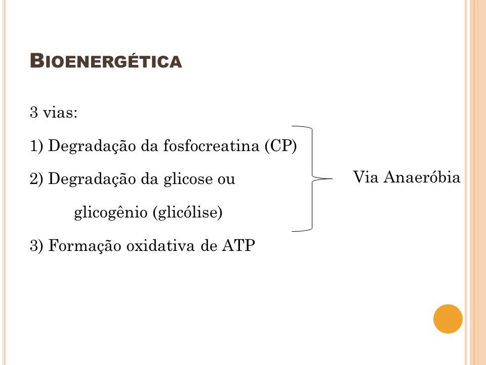 B IOENERGÉTICA 3 vias: 1) Degradação da fosfocreatina (CP) 2) Degradação da glicose ou glicogênio (glicólise) 3) Formação oxidativa de ATP Via Anaerób