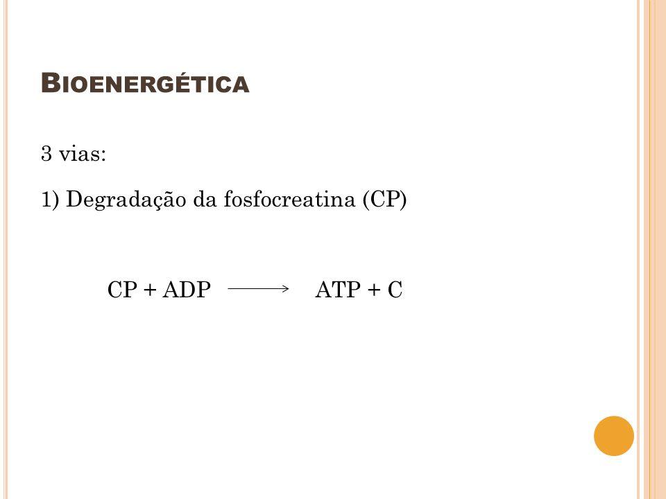 B IOENERGÉTICA 3 vias: 1) Degradação da fosfocreatina (CP) CP + ADP ATP + C