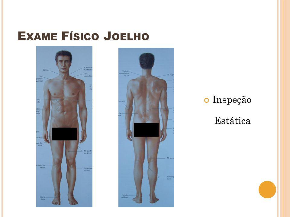 E XAME F ÍSICO J OELHO Inspeção Estática