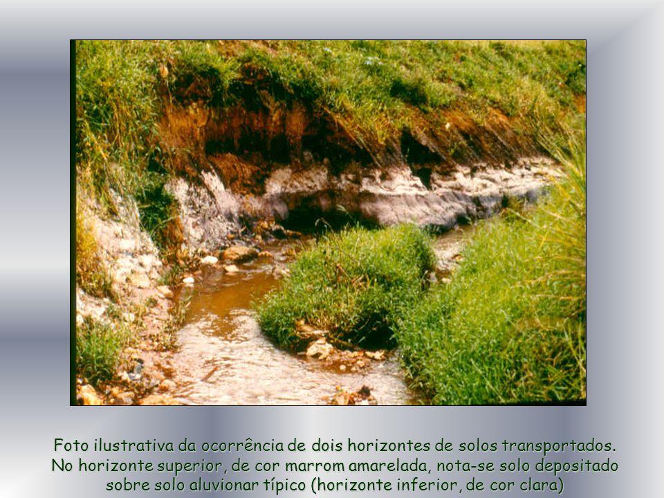 Foto ilustrativa da ocorrência de dois horizontes de solos transportados. No horizonte superior, de cor marrom amarelada, nota-se solo depositado sobr