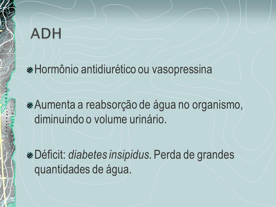 Hormônio antidiurético ou vasopressina Aumenta a reabsorção de água no organismo, diminuindo o volume urinário. Déficit: diabetes insipidus. Perda de