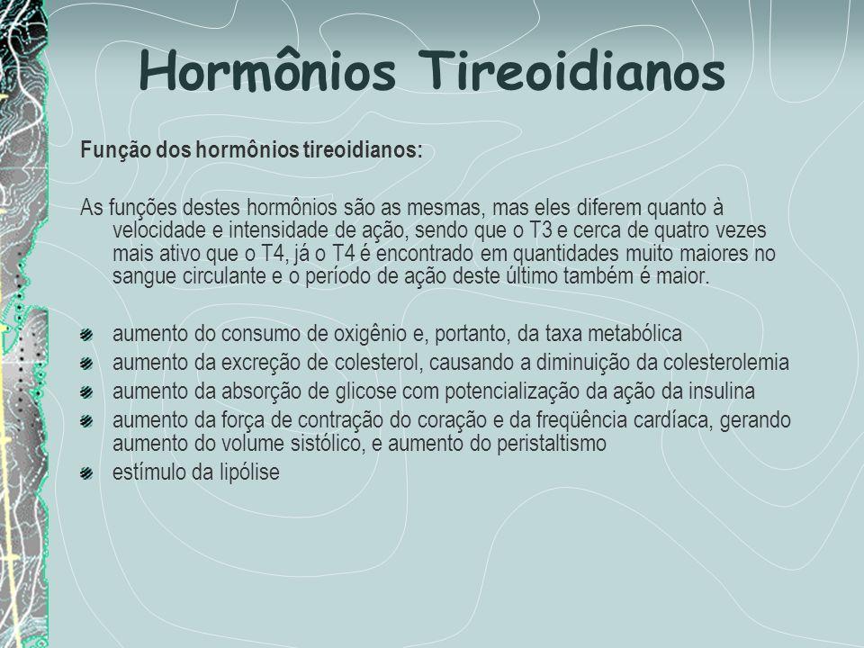 Hormônios Tireoidianos Função dos hormônios tireoidianos: As funções destes hormônios são as mesmas, mas eles diferem quanto à velocidade e intensidad