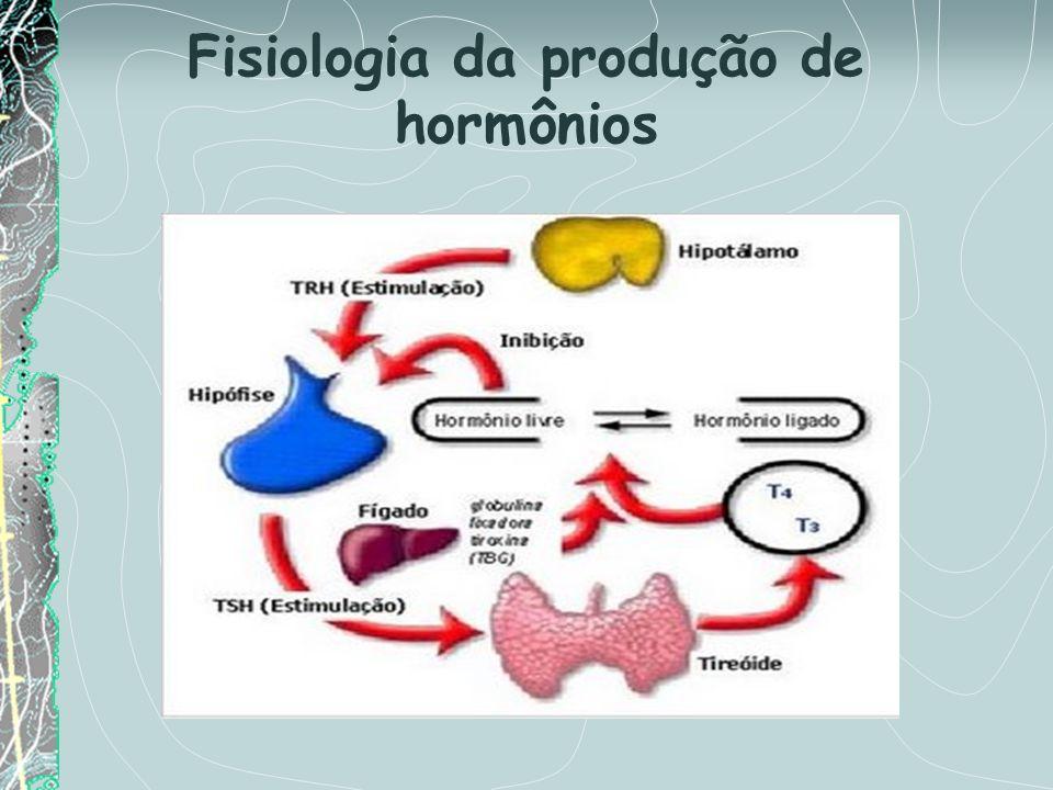 Fisiologia da produção de hormônios
