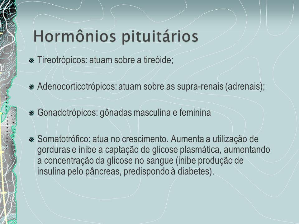 Tireotrópicos: atuam sobre a tireóide; Adenocorticotrópicos: atuam sobre as supra-renais (adrenais); Gonadotrópicos: gônadas masculina e feminina Soma