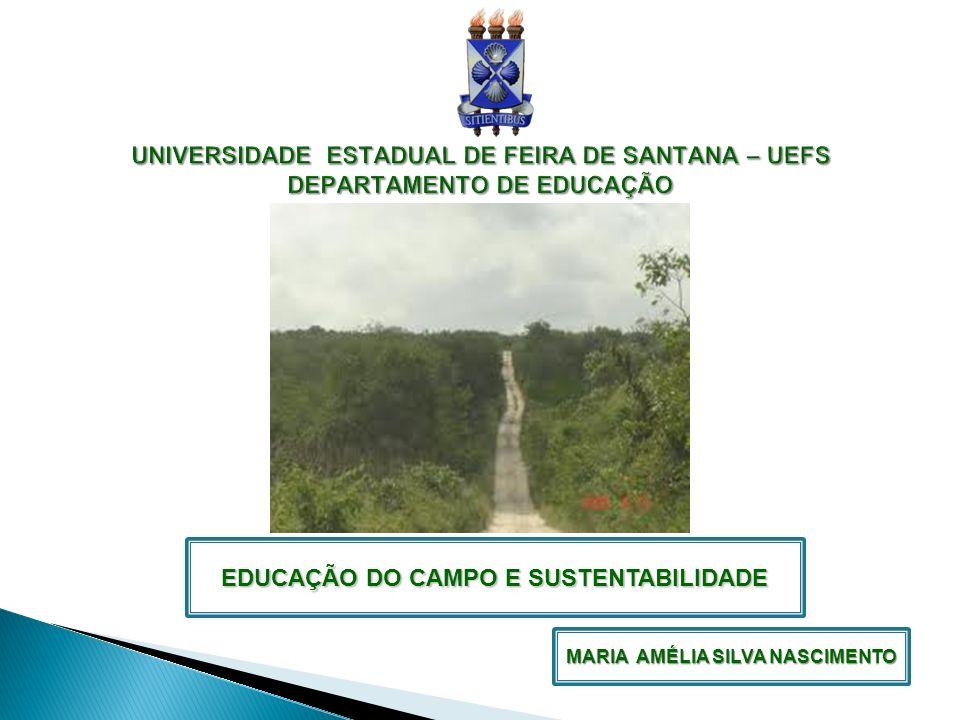 EDUCAÇÃO DO CAMPO E SUSTENTABILIDADE MARIA AMÉLIA SILVA NASCIMENTO