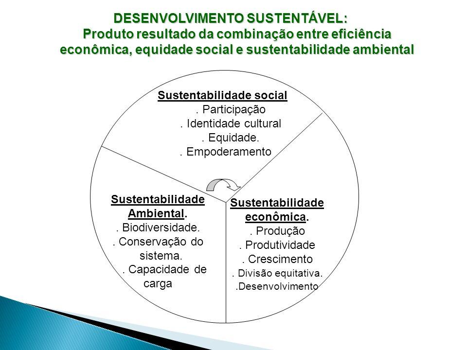 DESENVOLVIMENTO SUSTENTÁVEL: Produto resultado da combinação entre eficiência econômica, equidade social e sustentabilidade ambiental Sustentabilidade
