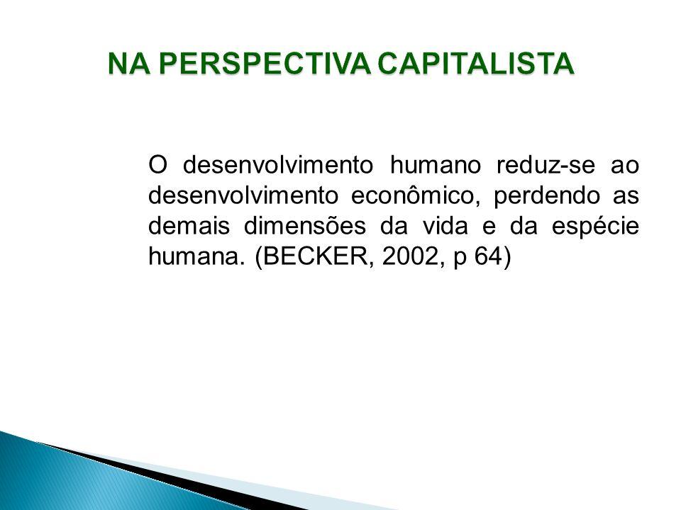 O desenvolvimento humano reduz-se ao desenvolvimento econômico, perdendo as demais dimensões da vida e da espécie humana.