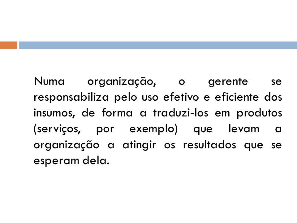 Numa organização, o gerente se responsabiliza pelo uso efetivo e eficiente dos insumos, de forma a traduzi-los em produtos (serviços, por exemplo) que