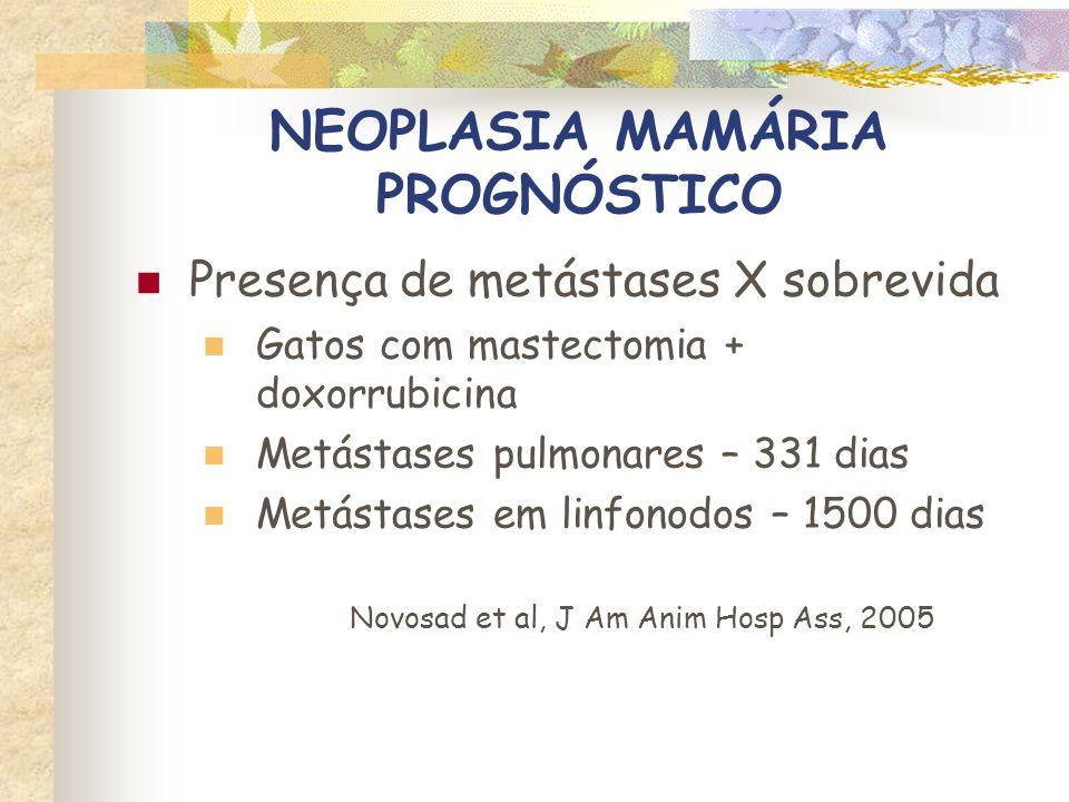 NEOPLASIA MAMÁRIA PROGNÓSTICO Cirurgia X sobrevida Mastectomia radical Reduziu a recidiva, mas não aumentou a sobrevida MacEwen et al, J.A.V.M.A., 1984