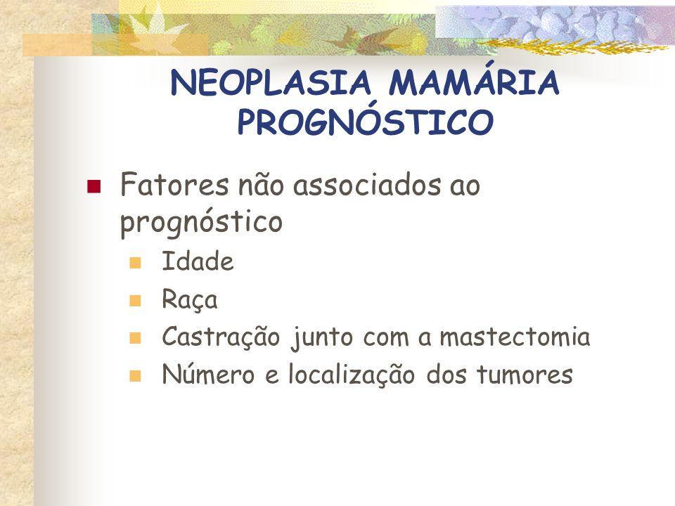 QUALIDADE DE VIDA chvasconcellos@ig.com.br