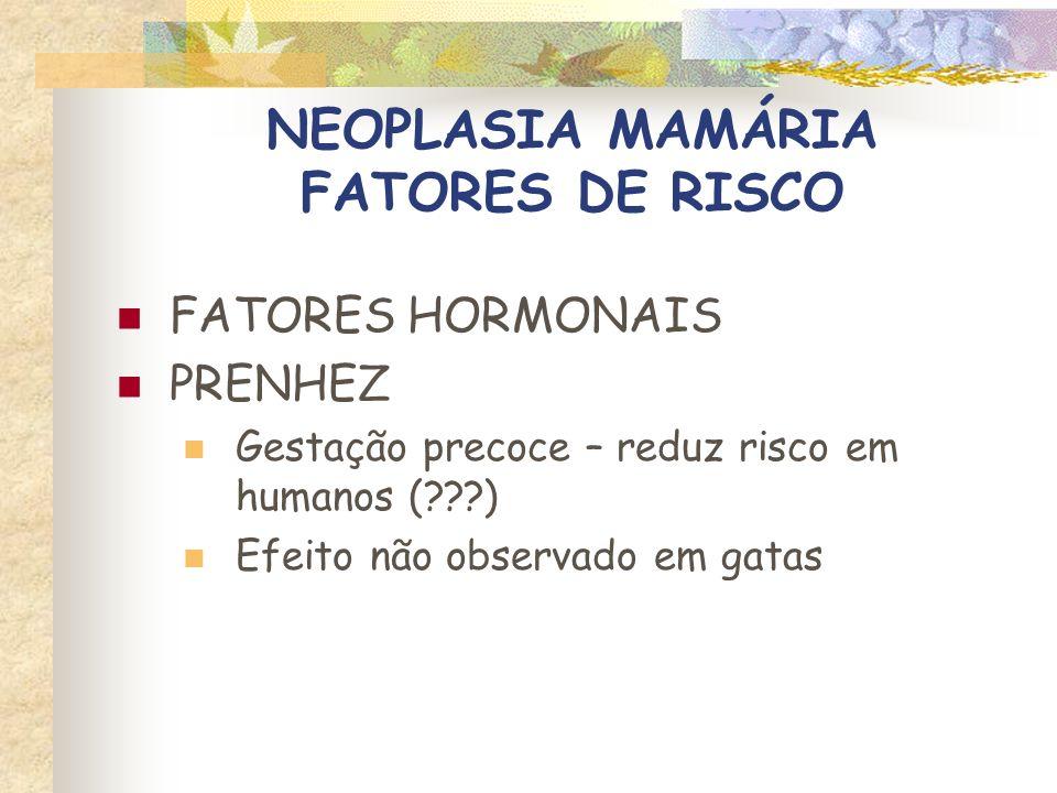 NEOPLASIA MAMÁRIA FATORES DE RISCO FATORES HORMONAIS PROGESTÁGENOS EXÓGENOS Risco bem reconhecido em felinos selvagens (zoológicos) Maior risco em gatas que usam anticoncepcionais (3X) Associado a ocorrência de neo mamária em machos
