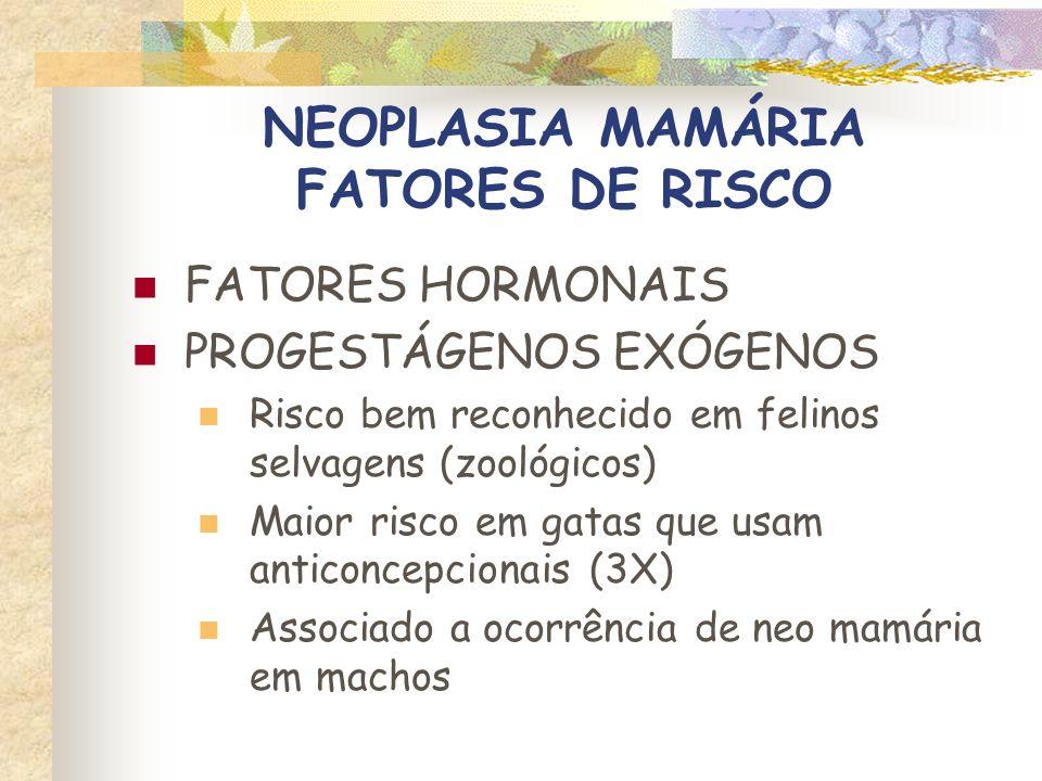 NEOPLASIA MAMÁRIA PATOLOGIA Origem Células epiteliais ductuolares e alveolares Células mioepiteliais Células do tecido conjuntivo Cerca de 85 - 93% são malignos