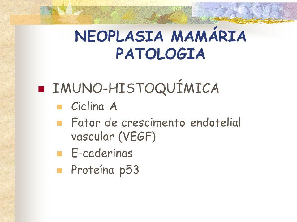 NEOPLASIA MAMÁRIA PATOLOGIA METÁSTASES Geralmente por via linfática Linfonodos regionais Axilares, inguinais superficiais