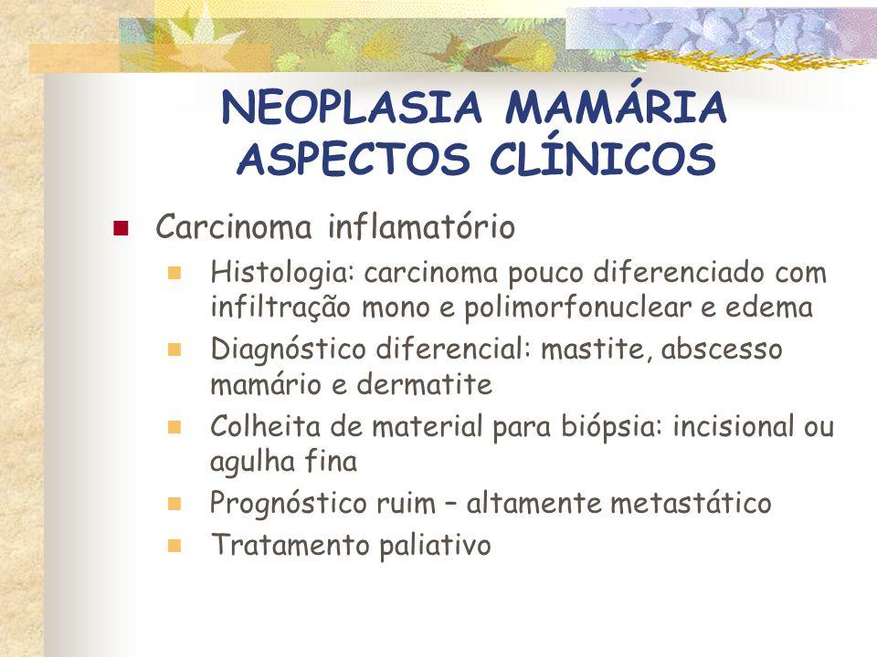 NEOPLASIA MAMÁRIA ASPECTOS CLÍNICOS Carcinoma inflamatório Ogilvie, 1983
