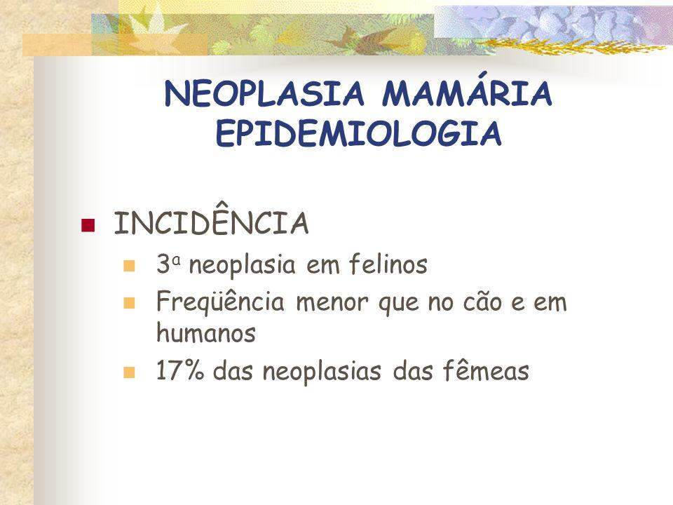 NEOPLASIA MAMÁRIA EPIDEMIOLOGIA SEXO Machos – risco < 1%, associado a aplicação de progestágenos Fêmeas castradas – metade do risco