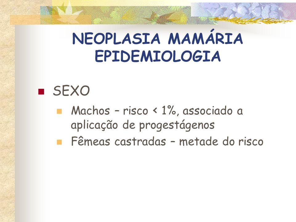 NEOPLASIA MAMÁRIA EPIDEMIOLOGIA RAÇA Siamesas - maior risco (2X), idade mais jovem DSH – maior sobrevida Tricolores (SRD)