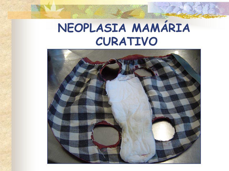 CIRURGIA LOCAL X RADICAL NEOPLASIA MAMÁRIA TRATAMENTO