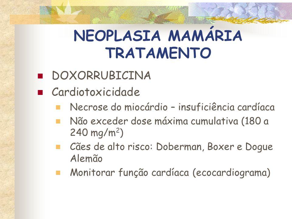 NEOPLASIA MAMÁRIA TRATAMENTO DOXORRUBICINA Doses para felinos - 25 mg/m 2 IV ou 1mg/kg Cardiotoxicidade – não comprovada Nefrotoxicidade Perda dos bigodes