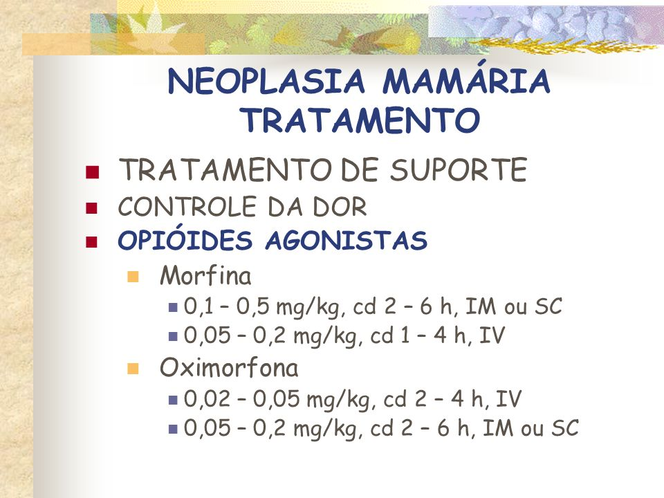NEOPLASIA MAMÁRIA TRATAMENTO TRATAMENTO DE SUPORTE CONTROLE DA DOR OPIÓIDES AGONISTAS- ANTAGONISTAS Buprenorfina 0,005 – 0,01 mg/kg, cd 4 – 8 h, IV, IM ou SC Butorfanol 0,1 – 0,4 mg/kg, cd 1 – 4 h, IV, IM ou SC