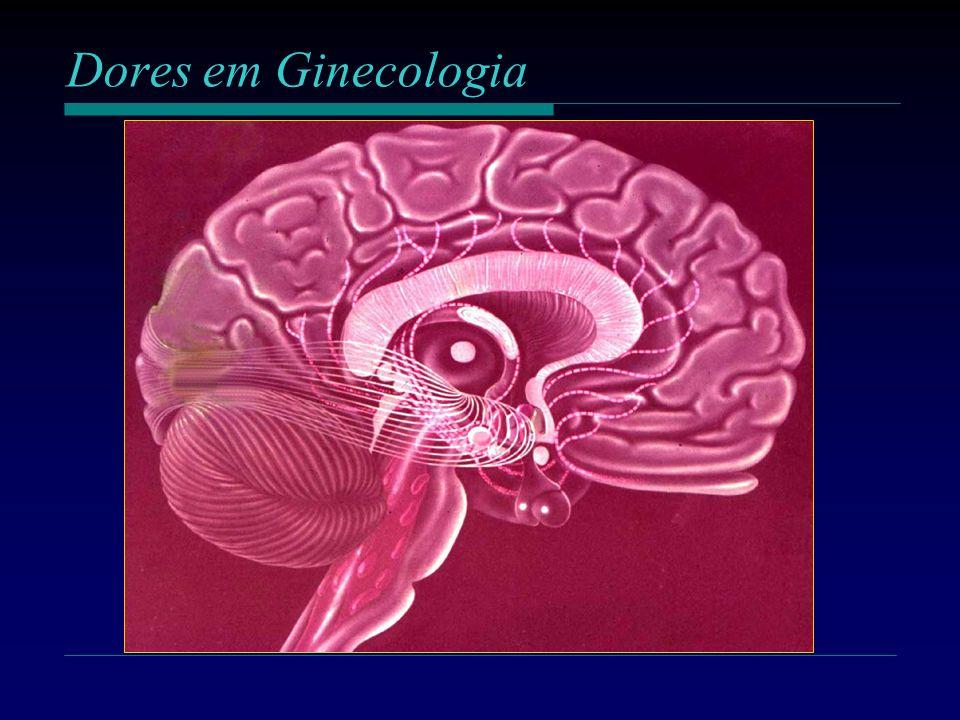 Dores em Ginecologia