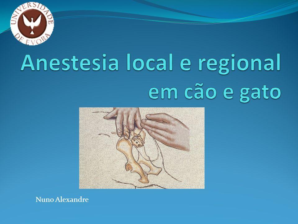 Anestesia local e regional Razões para utilizarmos: Analgesia preemptiva Pode evitar anestesia geral Diminui concentração de anestésicos voláteis Como técnica de anestesia balanceada