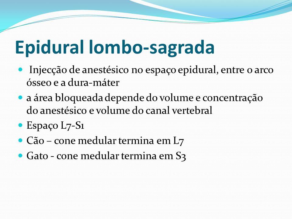 Epidural lombo-sagrada Injecção de anestésico no espaço epidural, entre o arco ósseo e a dura-máter a área bloqueada depende do volume e concentração