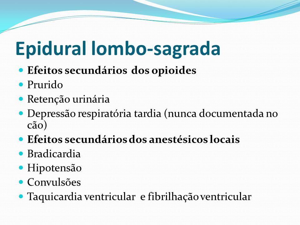 Epidural lombo-sagrada Efeitos secundários dos opioides Prurido Retenção urinária Depressão respiratória tardia (nunca documentada no cão) Efeitos sec