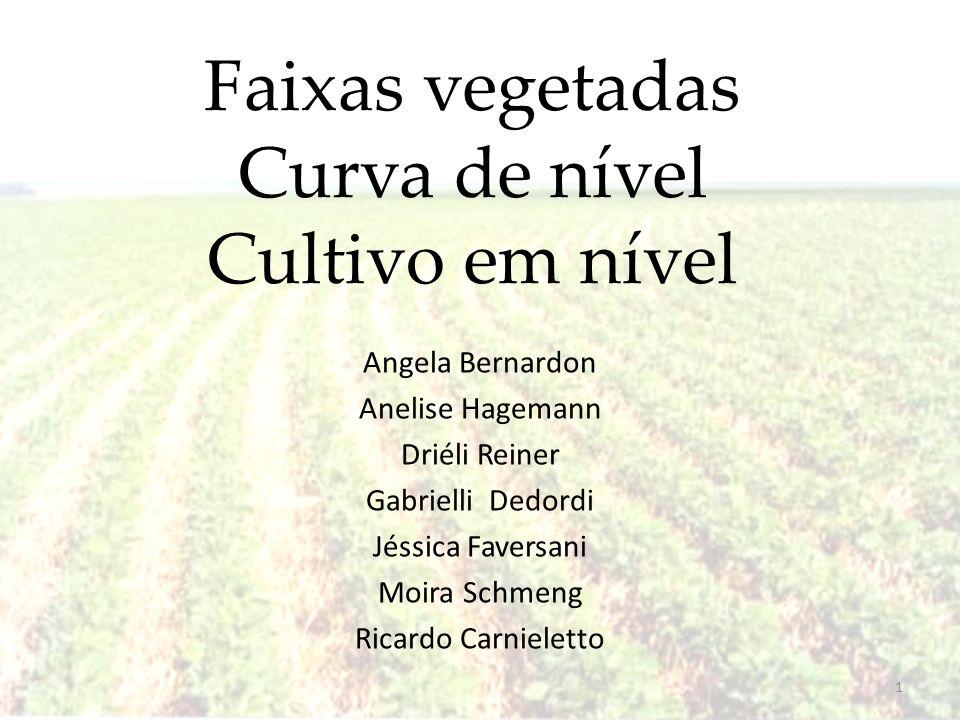 Faixas vegetadas Curva de nível Cultivo em nível Angela Bernardon Anelise Hagemann Driéli Reiner Gabrielli Dedordi Jéssica Faversani Moira Schmeng Ric
