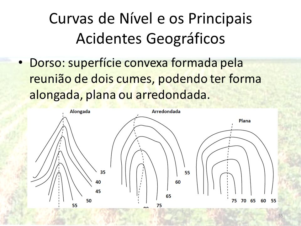 Curvas de Nível e os Principais Acidentes Geográficos Dorso: superfície convexa formada pela reunião de dois cumes, podendo ter forma alongada, plana