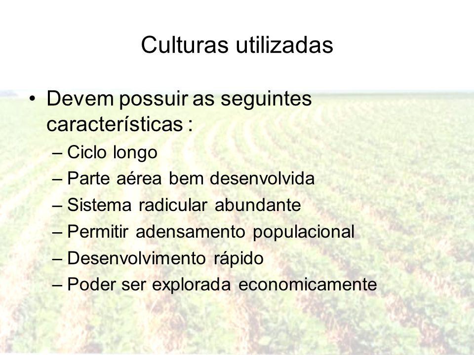 Culturas utilizadas Devem possuir as seguintes características : –Ciclo longo –Parte aérea bem desenvolvida –Sistema radicular abundante –Permitir ade