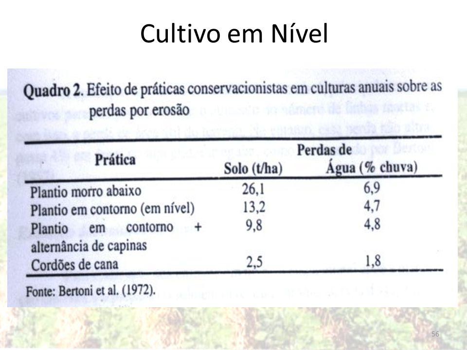 56 Cultivo em Nível