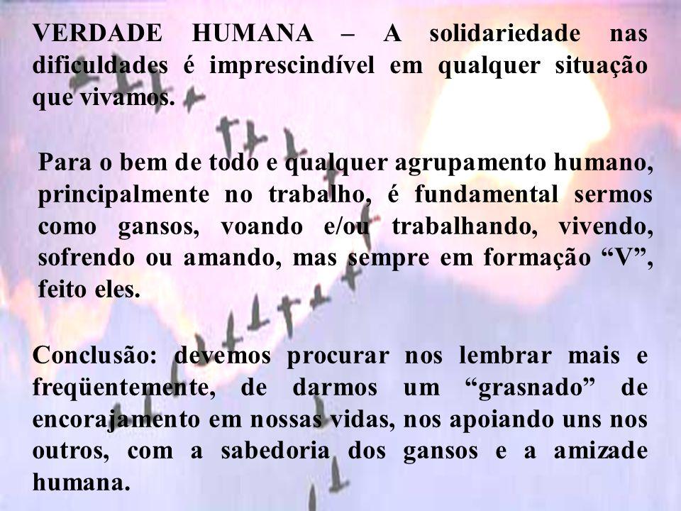 VERDADE HUMANA – A solidariedade nas dificuldades é imprescindível em qualquer situação que vivamos. Para o bem de todo e qualquer agrupamento humano,