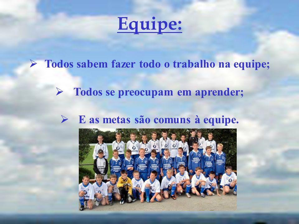 Equipe: Todos sabem fazer todo o trabalho na equipe; Todos se preocupam em aprender; E as metas são comuns à equipe.