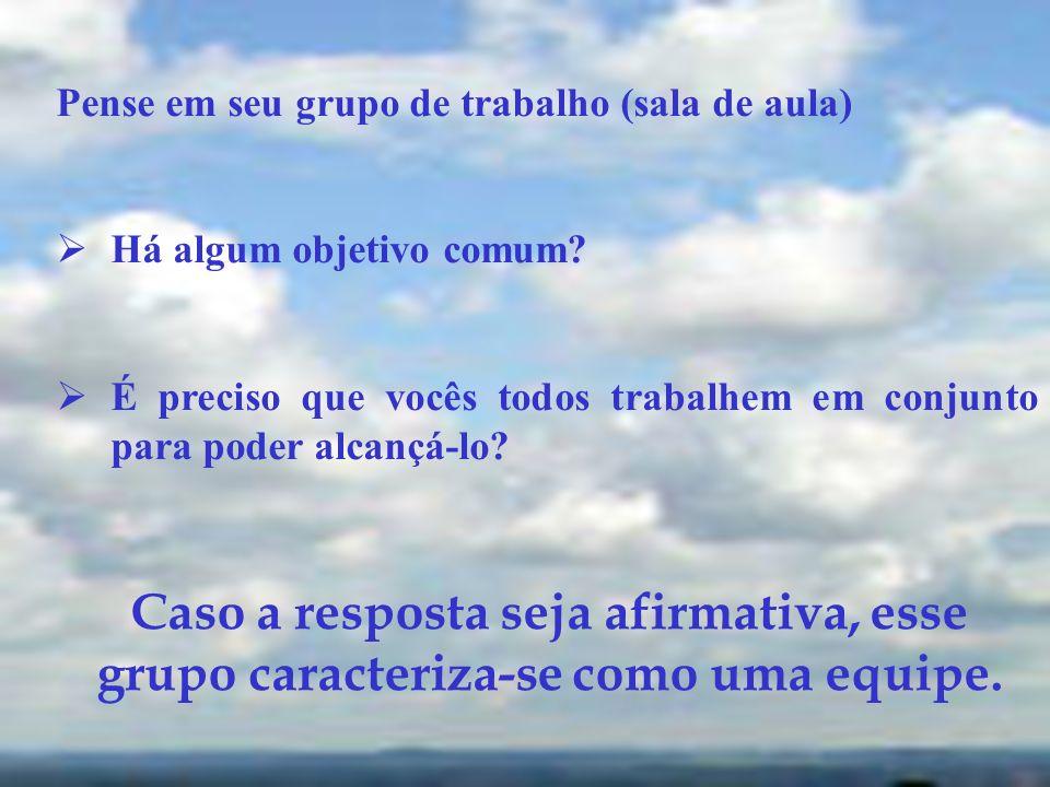 O objetivo ou objetivos comuns são a diferença entre um grupo e uma equipe.