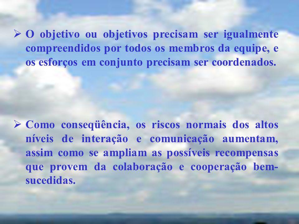 O objetivo ou objetivos precisam ser igualmente compreendidos por todos os membros da equipe, e os esforços em conjunto precisam ser coordenados. Como