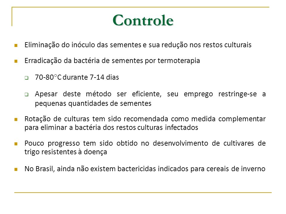 Branqueamento ou Crestamento da Folha Branqueamento ou Crestamento da Folha Agente causal Pseudomonas syringae pv.