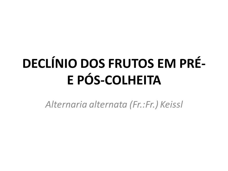 Introdução O declínio dos frutos em pré- e pós-colheita não é relatado no Brasil Ocorre com certa freqüência em outros países produtores de caqui Levando a depreciação dos frutos que ficam imprestáveis ao consumo Esta doença também atinge outras frutíferas, como a mangueira e o mamoeiro