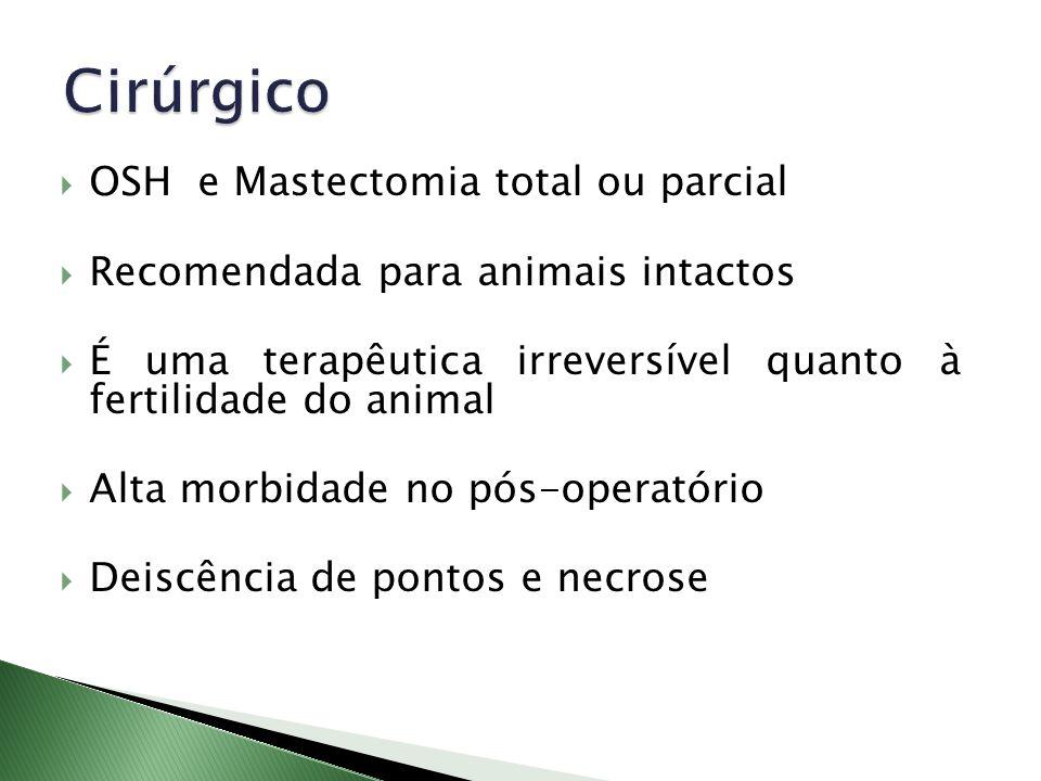 OSH e Mastectomia total ou parcial Recomendada para animais intactos É uma terapêutica irreversível quanto à fertilidade do animal Alta morbidade no p