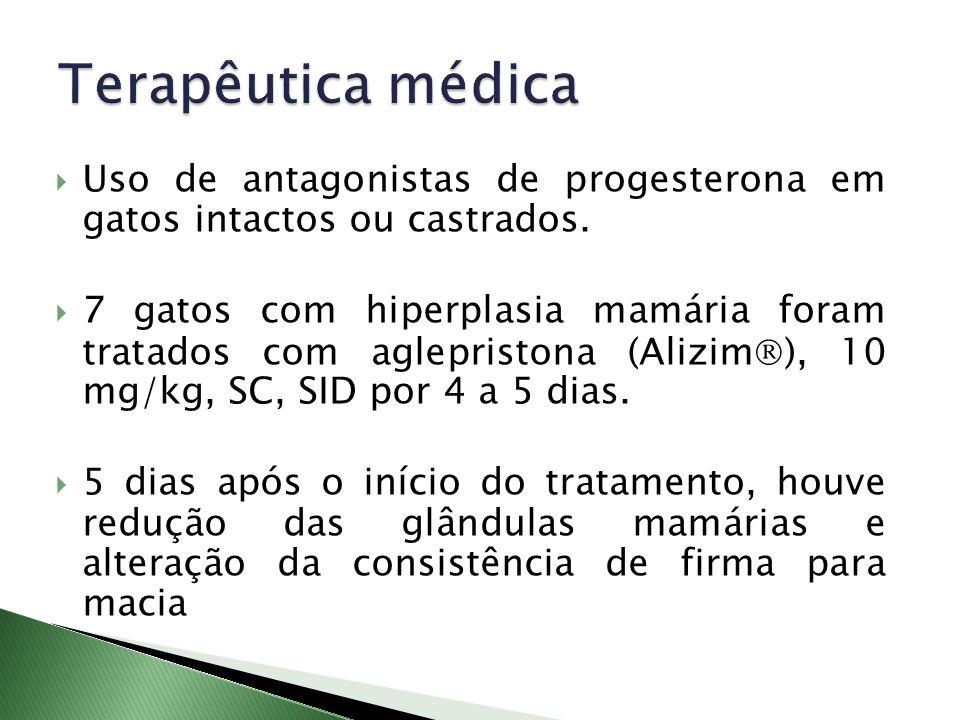 Uso de antagonistas de progesterona em gatos intactos ou castrados. 7 gatos com hiperplasia mamária foram tratados com aglepristona (Alizim ), 10 mg/k