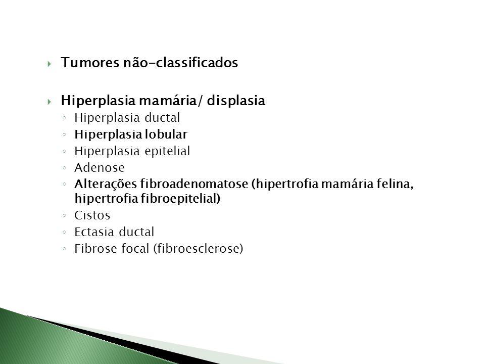 Tumores não-classificados Hiperplasia mamária/ displasia Hiperplasia ductal Hiperplasia lobular Hiperplasia epitelial Adenose Alterações fibroadenomat
