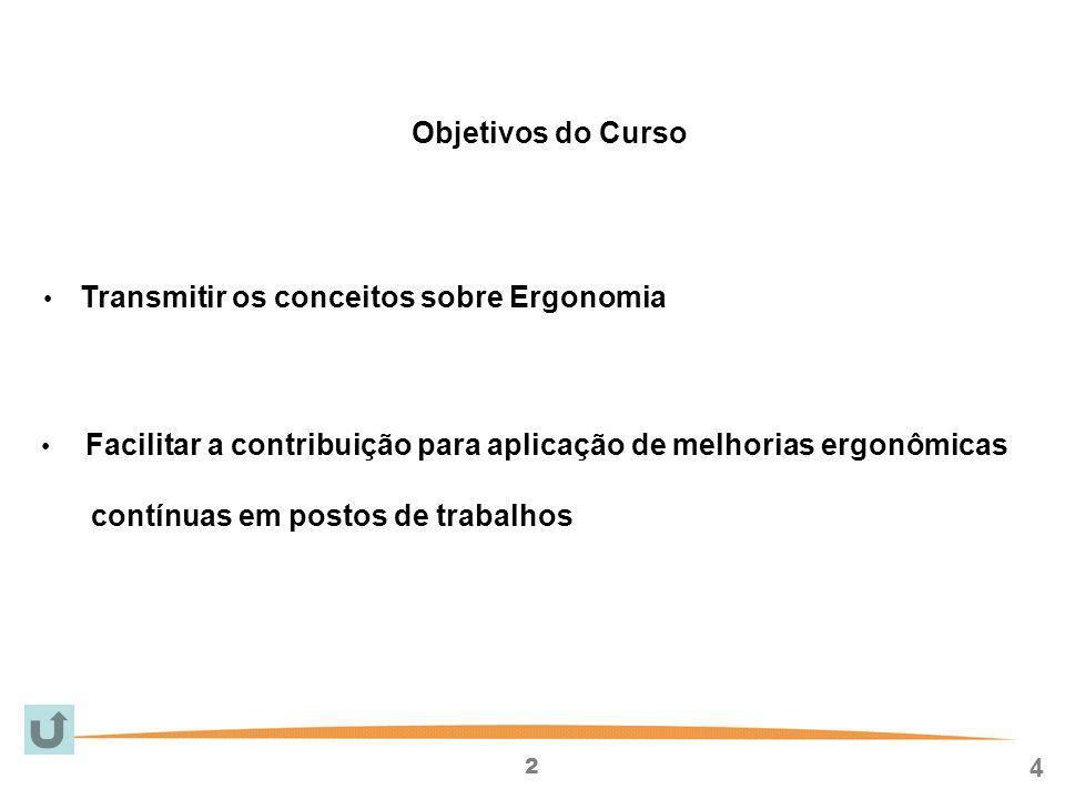 2 4 Transmitir os conceitos sobre Ergonomia Facilitar a contribuição para aplicação de melhorias ergonômicas contínuas em postos de trabalhos Objetivos do Curso