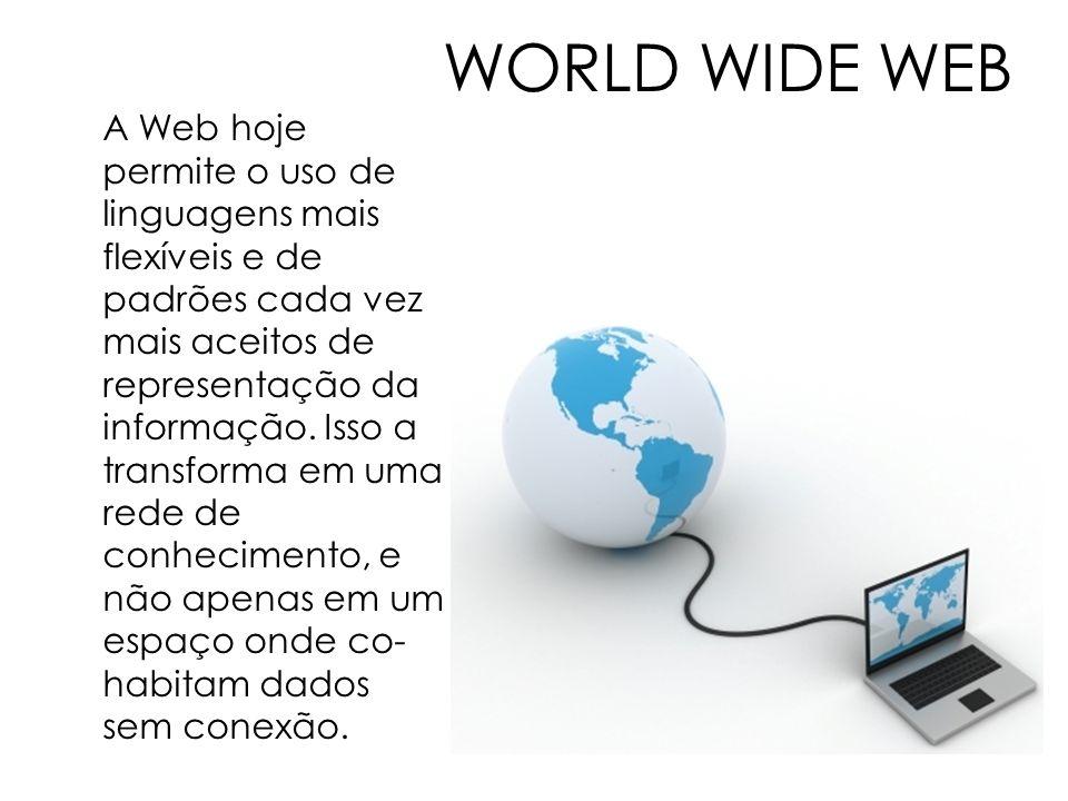 WORLD WIDE WEB A Web hoje permite o uso de linguagens mais flexíveis e de padrões cada vez mais aceitos de representação da informação. Isso a transfo
