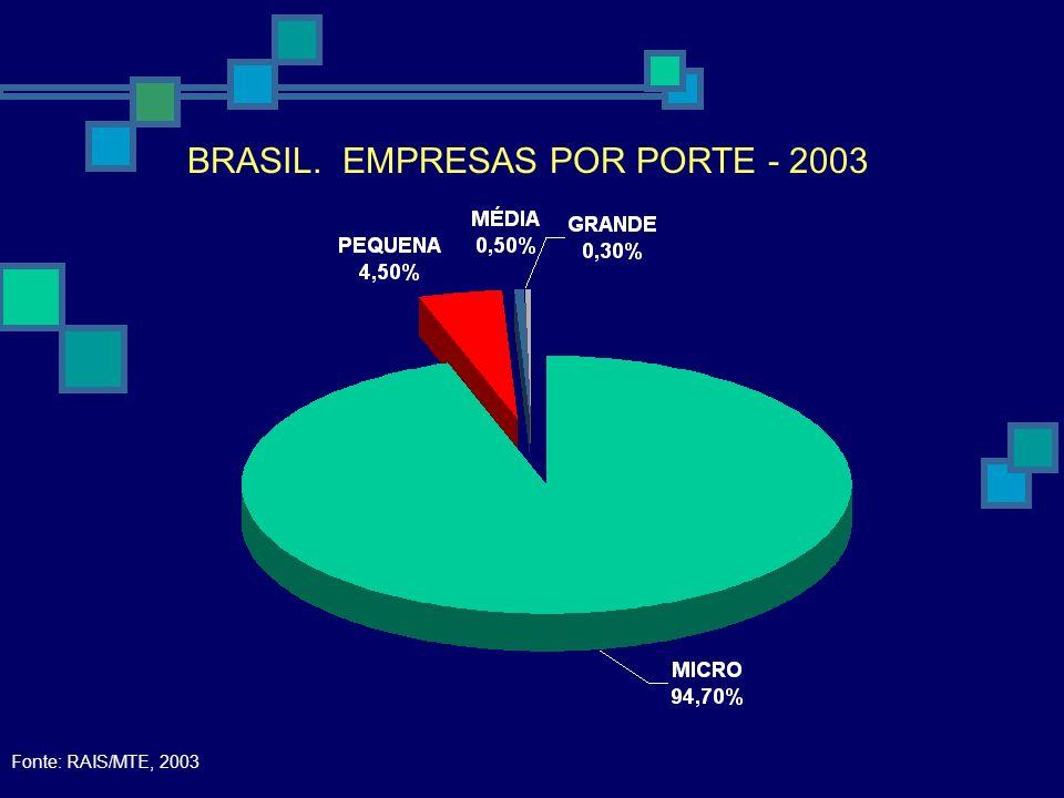 BRASIL. EMPRESAS POR PORTE - 2003 Fonte: RAIS/MTE, 2003