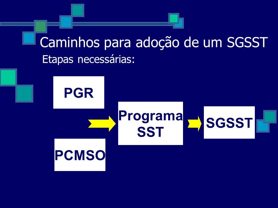 Caminhos para adoção de um SGSST Etapas necessárias: PGR PCMSO SGSST Programa SST