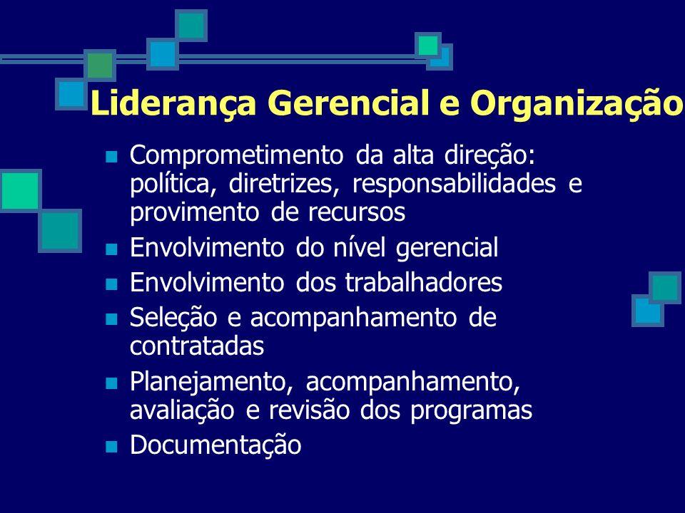 Liderança Gerencial e Organização Comprometimento da alta direção: política, diretrizes, responsabilidades e provimento de recursos Envolvimento do ní