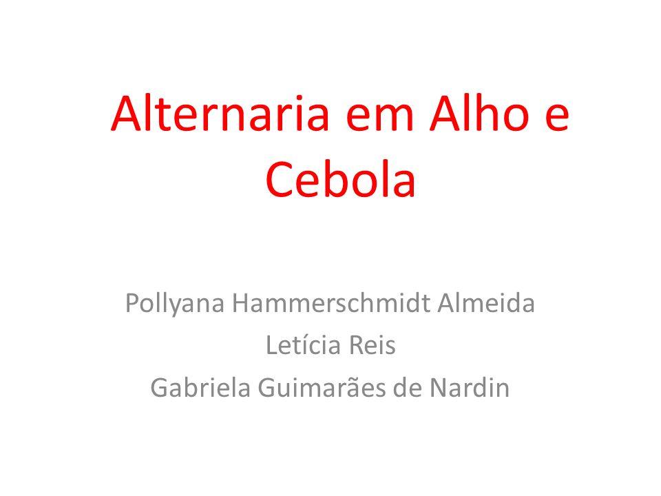 Alternaria em Alho e Cebola Pollyana Hammerschmidt Almeida Letícia Reis Gabriela Guimarães de Nardin